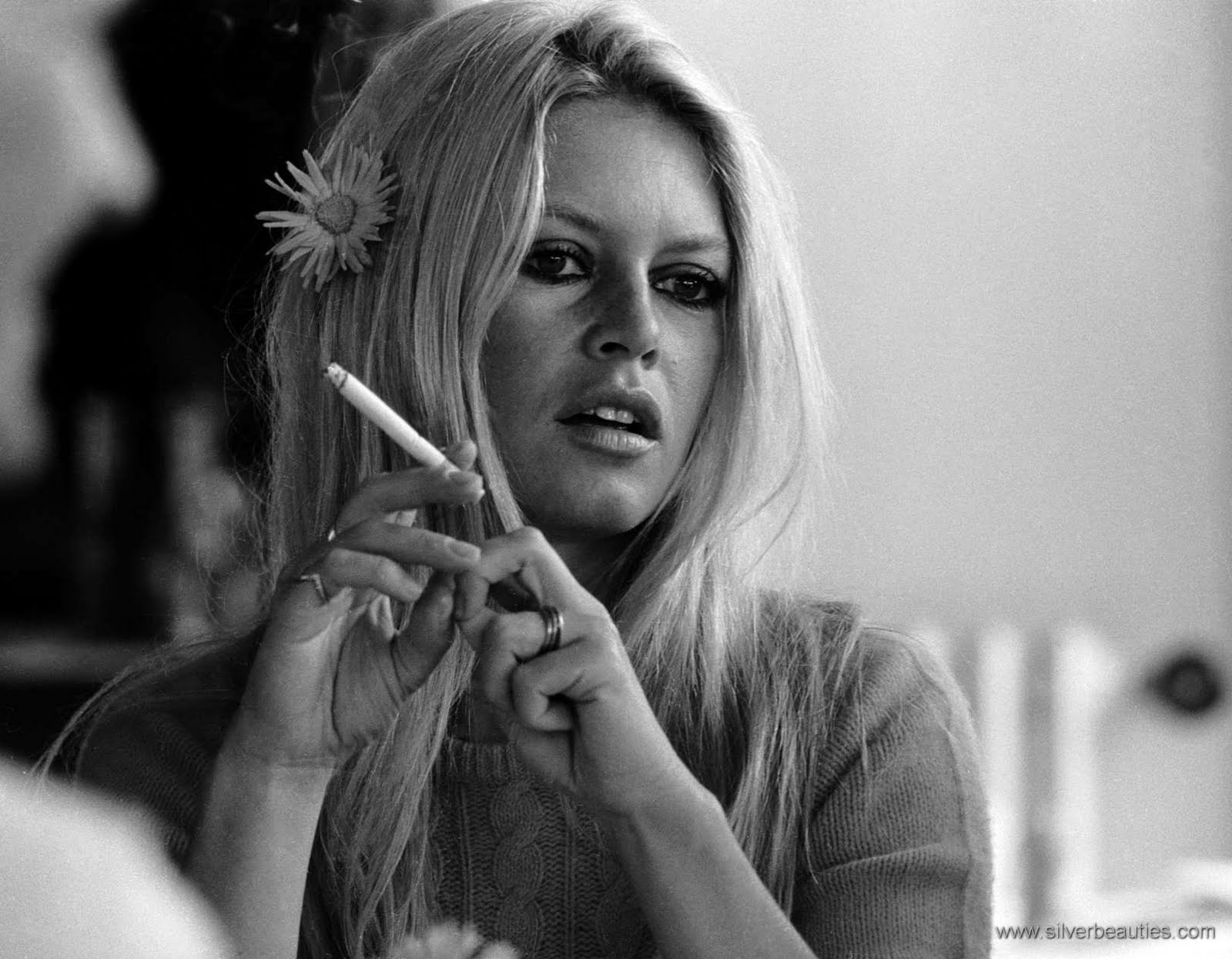 brigitte bardot 2016brigitte bardot 2016, brigitte bardot одежда, brigitte bardot la madrague, brigitte bardot 2017, brigitte bardot gif, brigitte bardot vk, brigitte bardot now, brigitte bardot 2014, brigitte bardot harley davidson, brigitte bardot la madrague перевод, brigitte bardot dress, brigitte bardot makeup, brigitte bardot son, brigitte bardot films, brigitte bardot песни, brigitte bardot fringe, brigitte bardot wikipédia, brigitte bardot quotes, brigitte bardot vom ditrikh, brigitte bardo группа